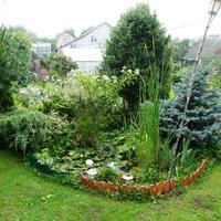 Декоративный прудик на садовом участке