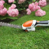 Стрижка растений - одно удовольствие с аккумуляторными  ножницами STIHL