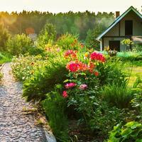 Школа защиты растений открывает свои двери для всех желающих. Объявляем набор на обучающий курс