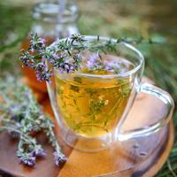 10 растений, которые помогут вам победить бессонницу