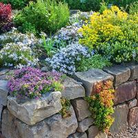 Всегда на высоте, или Приподнятые грядки для декоративных растений