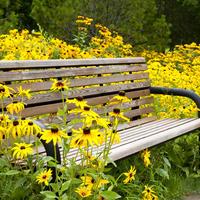 Семь поводов отдохнуть в саду. Удобные скамейки на любой вкус