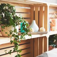 Необычная мебель из обычных ящиков: 41 яркая идея