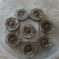 Торфяные таблетки jiffi-7: плюсы и минусы