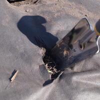 Тестирование совка посадочного Palisad luxe. Работы в огороде