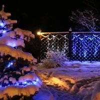 В ожидании чуда (Новогодние фантазии в любимом саду)