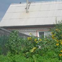 Двадцать лет работы на огороде