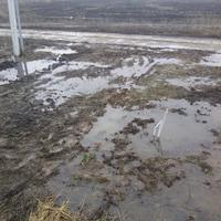 Что разумнее и при этом экономнее сделать в ситуации, когда поверхностные воды буквально затопили участок?