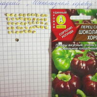 Перец сладкий Шоколадный хоровод - урожайным будет год!