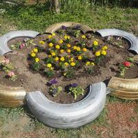 Клумба-цветочек украсит садочек...