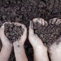 А вы знаете, какая почва на вашем участке? Определяем состав грунта самостоятельно