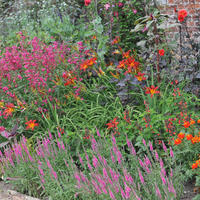 Готовимся к переменам! Февральский номер журнала «Мой прекрасный сад» уже в продаже