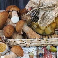 Как вкусно приготовить грибы: 18 рецептов заготовок на зиму