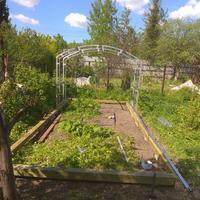 Мой любимый огородик!!!