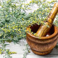 Травы для аппетита: какие существуют и как их использовать