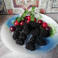 Ежевика Биг Макс - черное чудо, ведь ягоды - класс!