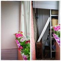 Уют на балконе помогут создать жалюзи