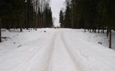 Лесная усадьба (Дмитровский район Московской области)