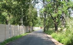 Чайка (Солнечногорский район Московской области)