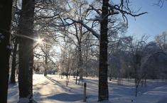 Николин Парк