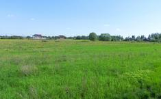 Панино (Чеховский район Московской области)