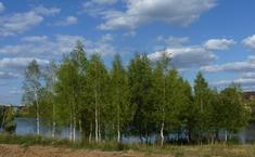 Времена года (Серпуховский район Московской области)