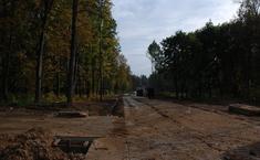 Лесные Поляны (Одинцовский район Московской области)