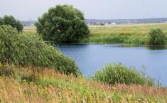 Озерный (Воскресенский район Московской области)