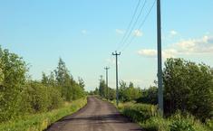 Дружный (Раменский район Московской области)