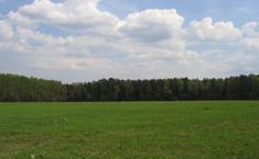 Ромашково (Ступинский район Московской области)