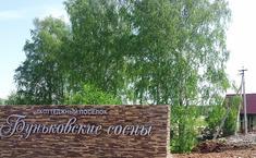 Буньковские сосны