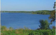 Журавли (Можайский район Московской области)