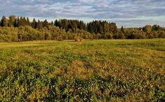 Аквамарин (Клинский район Московской области)