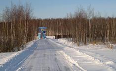 Березовый мостик-1,2