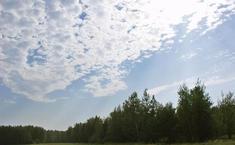 Изумрудный город (Истринский район Московской области)
