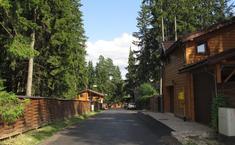 Сосновый берег (Чеховский район Московской области)