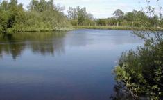Малиновка (Наро-Фоминский район Московской области)