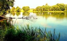 Салтыковские озера
