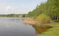 Лесное (Серпуховский район Московской области)