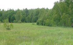 Зеленый квартал (Раменский район Московской области)
