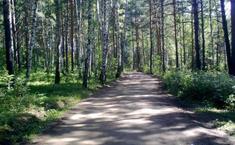 Лесной Парк (Октябрьский район Свердловской области)