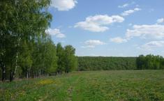 Альтернатива (Белоярский район Свердловской области)