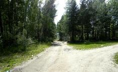 Содружество (Новосибирский район Новосибирской области)