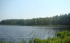 Дубки (Киржачский район Владимирской области)