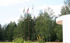 Дубрава (Белоярский район Свердловской области)