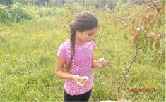 Утро. (Алина, 9 лет).