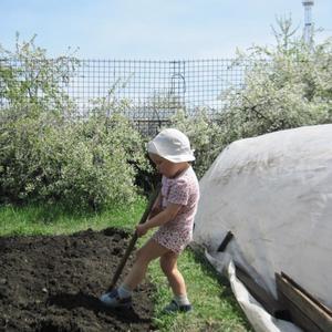 Вскопка огорода