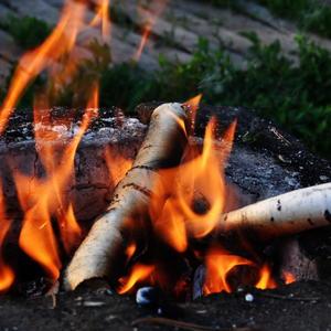 Костёр с берёзовыми дровами
