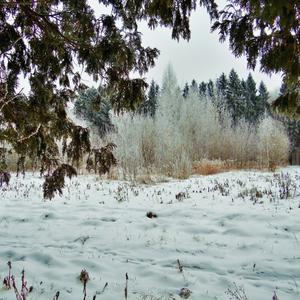 """""""Зимы ждала, ждала природа..."""""""
