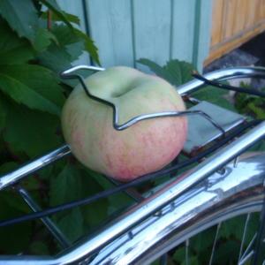 Эх, яблочко...